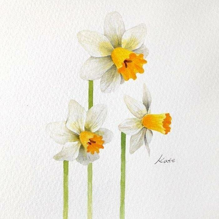 Корейская художница показала, как нарисовать идеальные цветы в 3 простых шага   Интересное