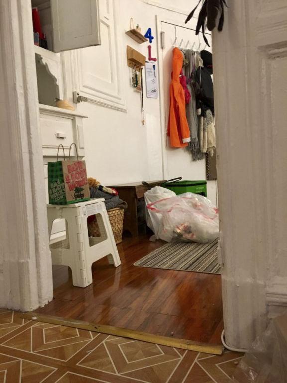 Эта кошка-ниндзя каждый день прячется в новом месте, и найти ее не так просто зверушки,живность,питомцы,Животные