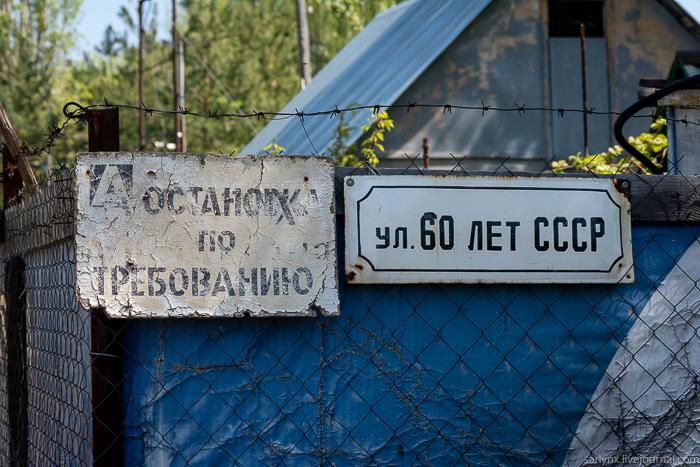 Зелёный остров Волга,Саратов