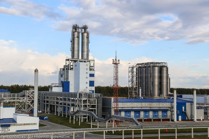 Омский завод «Полиом». Репортаж события,Новости,сделано у нас