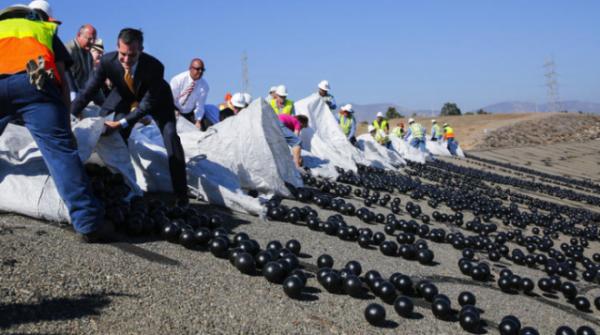 Зачем власти Лос-Анджелеса высыпали 96 млн шаров в водохранилище Интересное