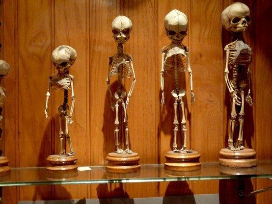 Самые страшные музеи из разных стран мира   Интересное