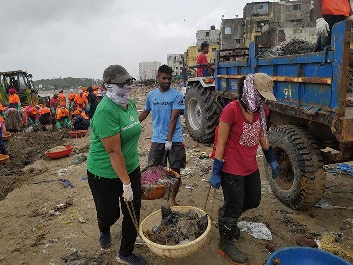 С пляжа в Индии убрали 5000 тонн мусора, чтобы спасти черепах Интересное