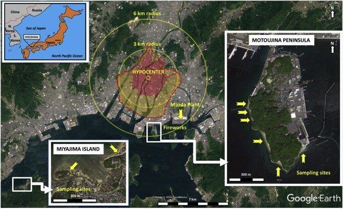 Хиросимиты — удивительные артефакты, созданные ядерным взрывом   Интересное