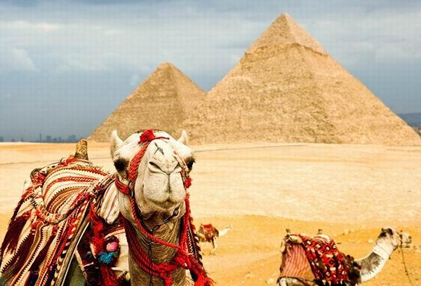 Экстремальные примеры «развода» туристов в мире Интересное