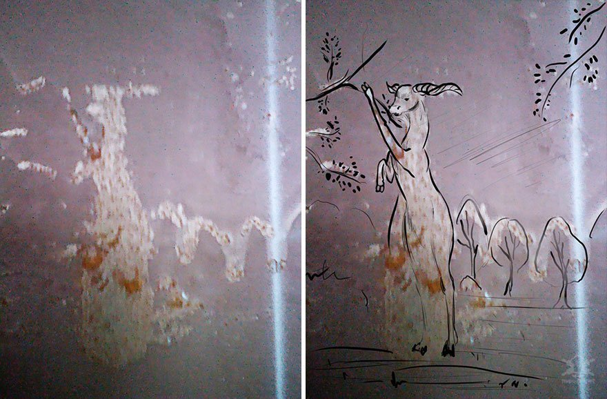 Художница создаёт симпатичные произведения искусства, вдохновляясь обшарпанными стенами Интересное