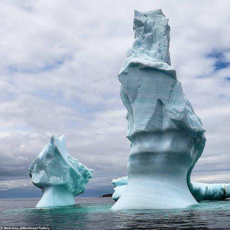 Как выглядит шествие айсбергов по Лабрадорскому морю природа
