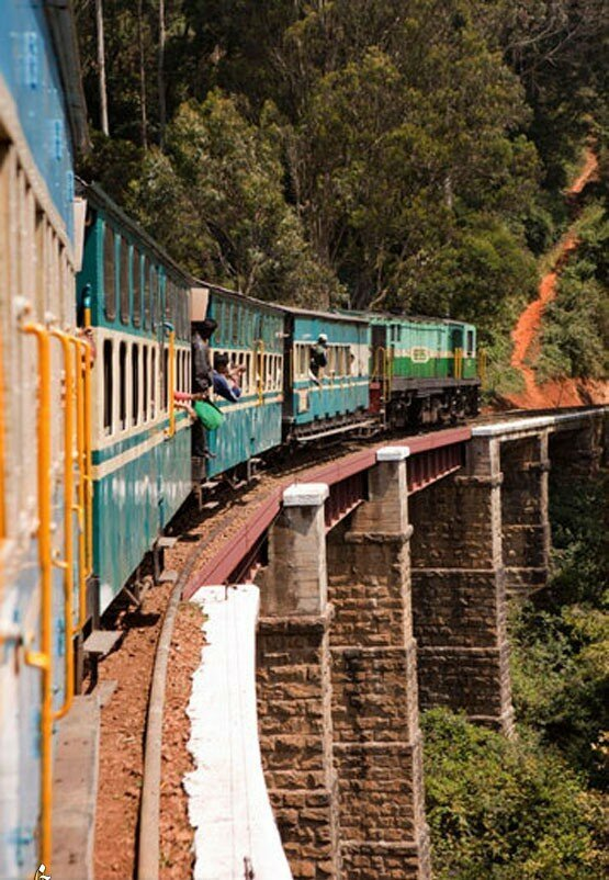 Ужасающие железные дороги со всего мира Путешествия,фото