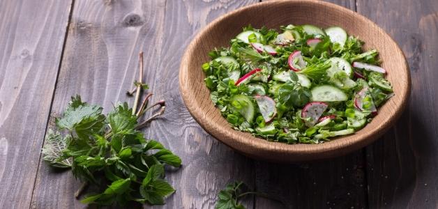 Салат из сныти – 6 полезных рецептов кулинария,рецепты,салаты