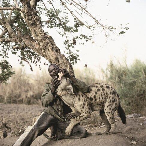 Африканские страсти: как приручить зверюгу