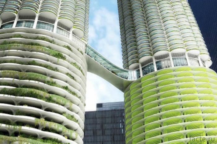 Вертикальные сады на фасадах многоэтажек города,жизнь,интересное,природа