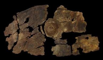 Чем 2300-летний щит из коры дерева лучше металлических щитов? Археология